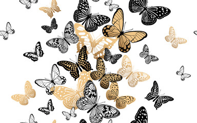 Fototapeta Do sypialni Seamless pattern with gold and black butterflies on a white background