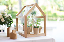 Little Flower Pot And Tree Pot In Bag With Mini Wood House For The Wedding Decoration.