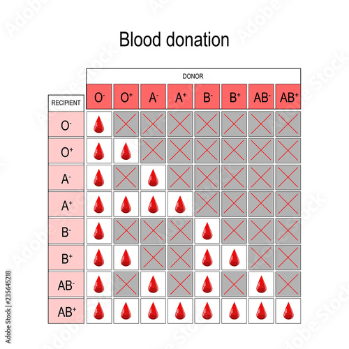 Fotografie, Obraz  Blood Donation Chart. Recipient and Donor.