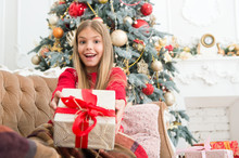 Look At That. Child Enjoy The Holiday. Happy New Year. Winter. Xmas Online Shopping. Family Holiday. Christmas Tree And Presents. The Morning Before Xmas. Little Girl