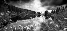 Lake In A Forest,Sumava - National Park, Czech Republic, Europe