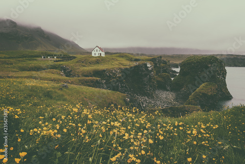 Staande foto Bleke violet Dramatic vintage summer landscape, lonely house on the volcanic cliffs flowering seacoast, Arnarstapi, Snaefellsnes peninsula, Iceland