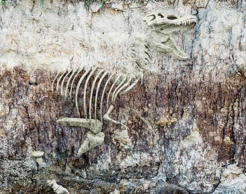 dinosaur skeleton. 3d