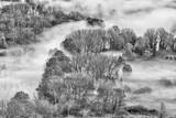 Mgła na lesie, Włochy - 235678060