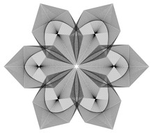 Abstract Floral Geometric Circ...