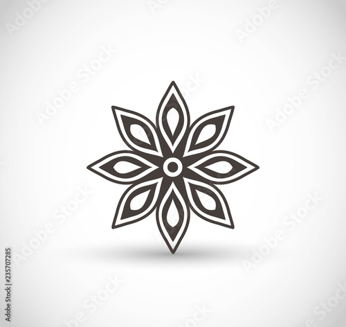 Star anise vector icon