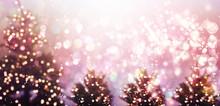 Illuminated Christmas Trees In...