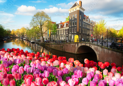 Fotografie, Obraz  Dutch scenery with canal and mirror reflections with tulips, Amstardam, Netherla