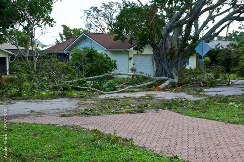 Photo View of downed trees in front of house and hurricane irma damage in florida