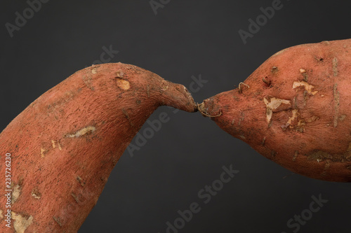 Two Sweet Potatoes Kissing Canvas Print