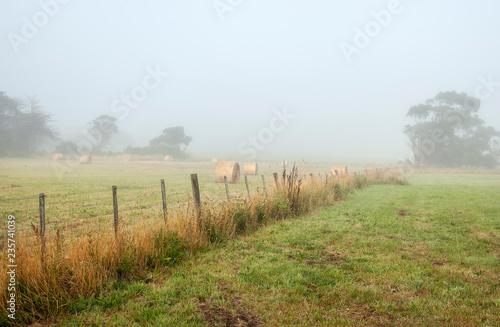 Foto op Plexiglas Oceanië Foggy dawn in Warrnambool, Australia. Beautiful morning light.