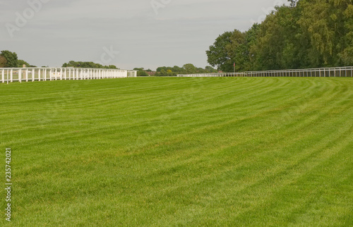 Fotomural Racecourse at Epsom Downs, Surrey, England