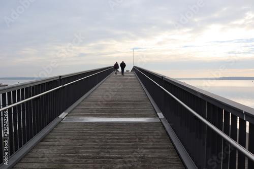 Foto op Aluminium Poort Auf der Seebrücke in Senftenberg