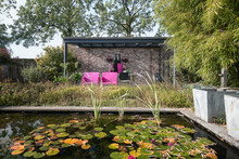 Two Pink Chairs Under An Overhang For A Pond To Enjoy The Sun In The Beautiful Autumn Garden