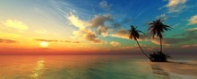 Beautiful Beach With Palm Trees At Sunset, Panorama Of A Tropical Landscape, Sea Sunset,