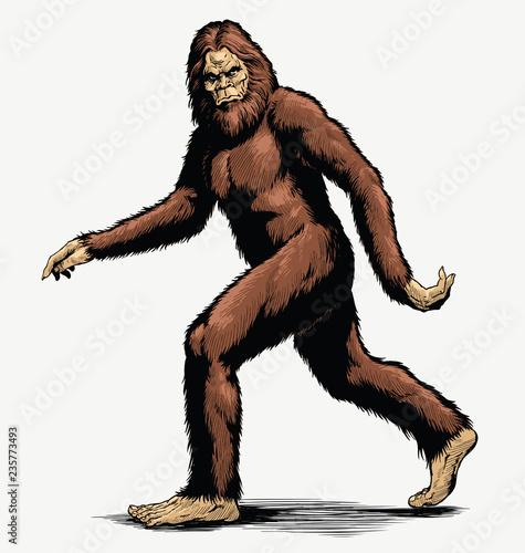 Walking Sasquatch vector illustration in full color
