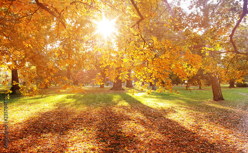 Cadres-photo bureau Artiste KB Beautiful, colorful autumn in an european country