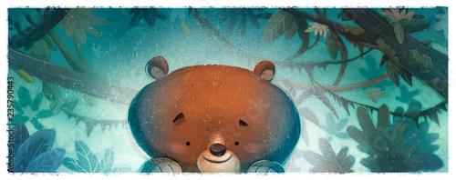 Fotografie, Obraz  oso en la selva
