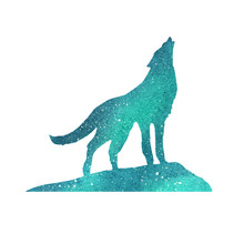 Wolf In Polar Lights. Watercolor Silhouette Sky