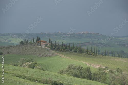 Tuinposter Donkergrijs panorama of tuscany