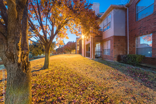 Fotografie, Tablou Beautiful view from backyard of apartment complex building at evening time during fall season