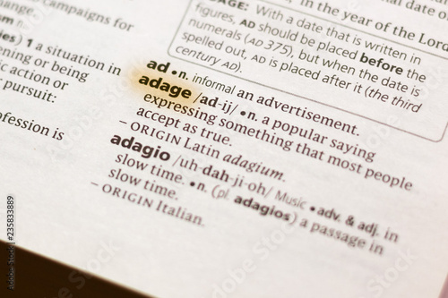 The word or phrase Adage in a dictionary. Wallpaper Mural