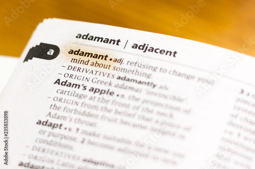 The word or phrase Adamant in a dictionary. Canvas Print