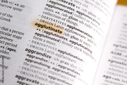 Photo The word or phrase Agglutinate in a dictionary.