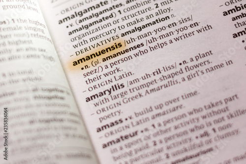 The word or phrase Amanuensis in a dictionary. Canvas Print