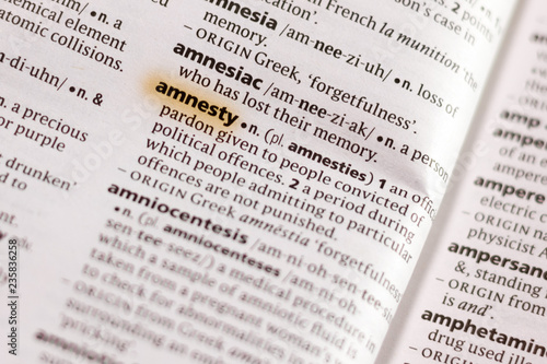 Photo The word or phrase Amnesty in a dictionary.