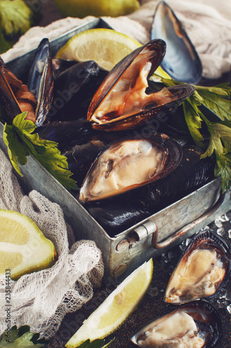 Fresh uncooked mussels