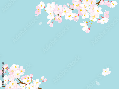Photographie 桜 背景イラスト