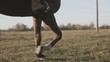 Beautiful woman riding brown horse in background sunrise in field. Young cowgirl at horse in slow motion outdoors. View of horse's legs