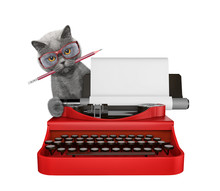 Cute Cat Is Typing On A Typewriter Keyboard. Isolated On White