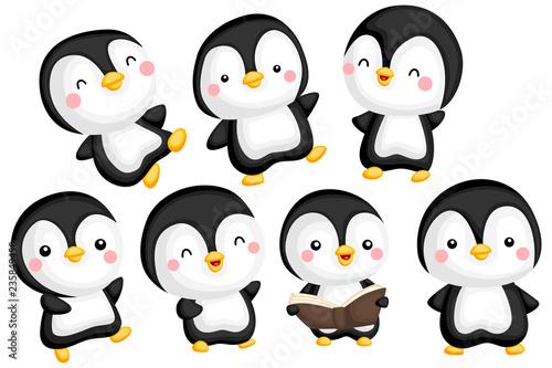 Fototapeta premium wektor zestaw ładny i urocza pingwina