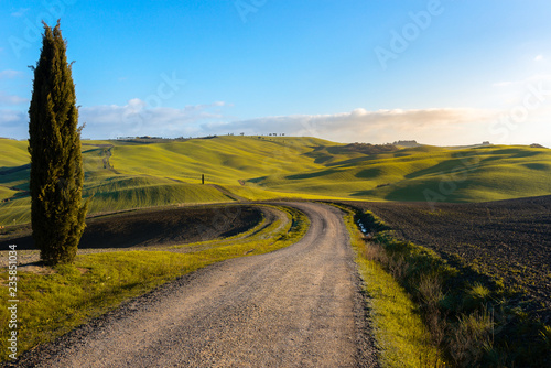 Tuscan landscape near San Quirico d'Orcia, with green rolling hills and cypress trees, Italy