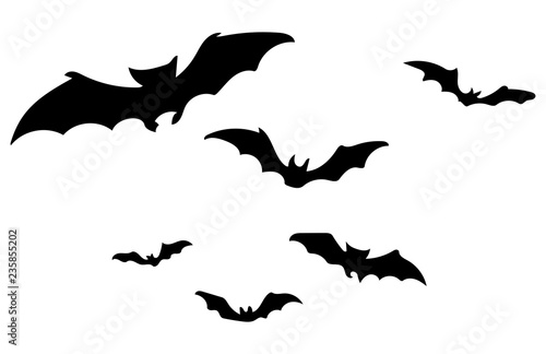 Canvas Print Bat