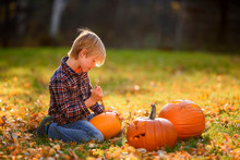 Boy Carving A Halloween Pumpkin In The Garden, United States