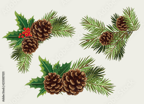 Obraz Vector collection branches of Christmas tree with pine cone - fototapety do salonu
