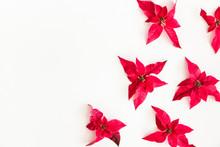 Christmas Composition. Frame Made Of Christmas Poinsettia On White Background. Top View, Flat Lay, Copy Space