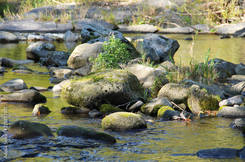 Fototapeten Forest river round boulders in the river with low level of water