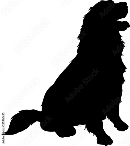 Sitting Golden Retriever Vector Silhouette Buy This Stock Vector And Explore Similar Vectors At Adobe Stock Adobe Stock Official fan page of golden retriever rescue of atlanta™. sitting golden retriever vector
