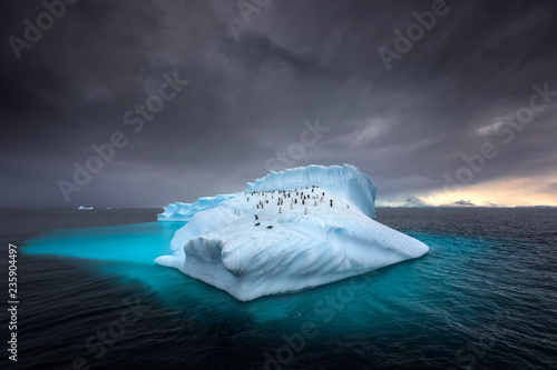 Tuinposter Antarctica Penguins on a giant iceberg in Antarctica