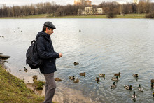 Handsome Dark-haired Middle-aged Man In Jacket, Cap And Backpack Feeds Ducks On Pond In City Park In Late Autumn. Authentic Lifestyle Moments
