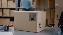 Cardboard Box Package Standing...