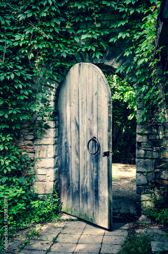 Foto op Plexiglas Historisch geb. Old gate in the medieval stone castle wall, covered by ivy