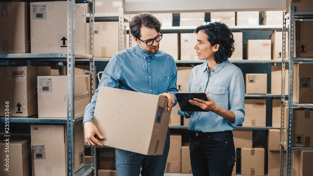 Fototapeta Female Inventory Manager Shows Digital Tablet Information to a Worker Holding Cardboard Box, They Talk and Do Work. In the Background Stock of Parcels with Products Ready for Shipment.