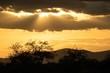 Sonnenuntergang im Amboseli Nationalpark in Afrika