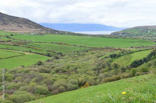 Typical Irish green landscape with fields, grass and hills