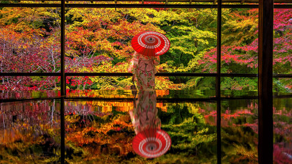 Fototapeta Japoński Colorful autumn Japanese garden of Rurikoin temple in Kyoto